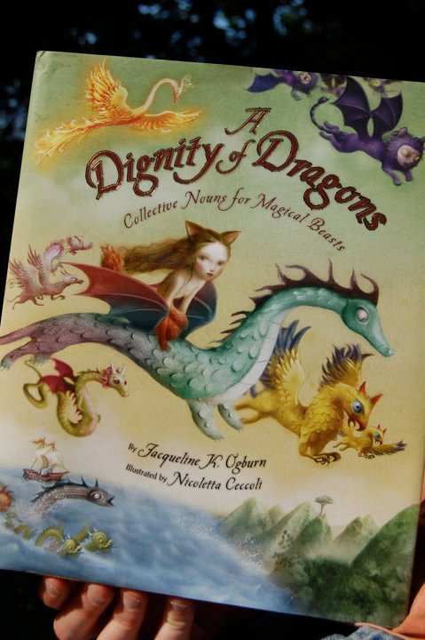 Dignity of a Dragons