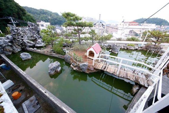 沢田マンション 池